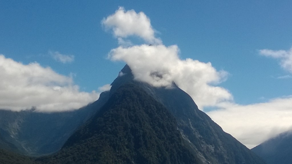 The Best Place to be in Milford Sound isn't on a Boat 2